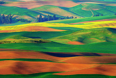 Palouse Photograph - Palette by Phillip Chang