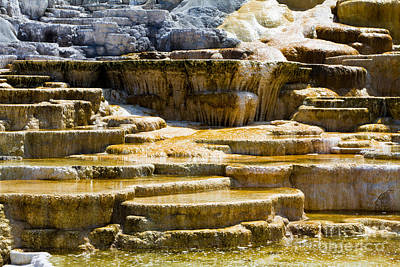 Palette Spring 2 Yellowstone National Park Wy Original