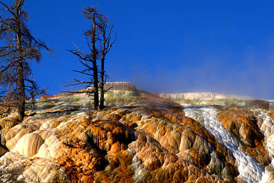 Photograph - Palette Spring Steam by Brian Harig