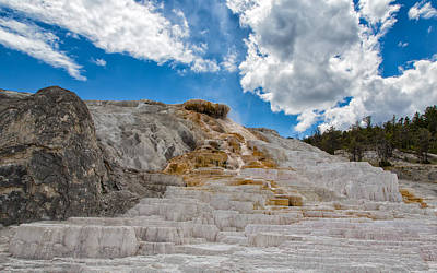 Photograph - Palette Springs Terraces Yellowstone by John M Bailey