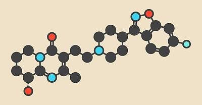 Schizophrenia Photograph - Paliperidone Antipsychotic Drug Molecule by Molekuul
