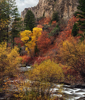 Fall Colors Photograph - Palisades Creek Canyon by Leland D Howard