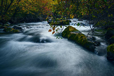 Palisades Creek Idaho In Fall Art Print by Vishwanath Bhat