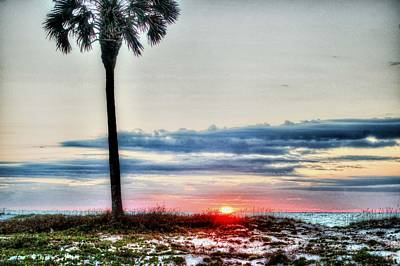 Pier Digital Art - Palm And Sun by Michael Thomas