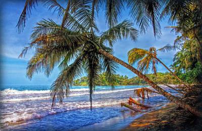Photograph - Palm Beach Dream by Hanny Heim