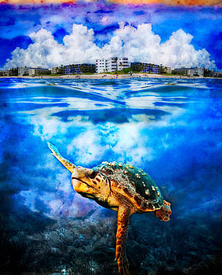 Photograph - Palm Beach Under And Over by Debra and Dave Vanderlaan