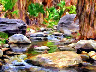 Palm Canyon Trail Print by Michael Pickett