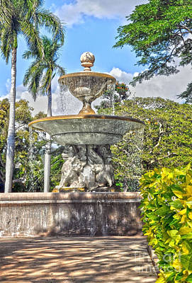 Photograph - Palm Circle Fountain by Gina Savage