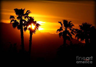 Palm Desert Sunset Art Print by Patrick Witz