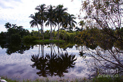 Photograph - Palm Island I by Christiane Schulze Art And Photography