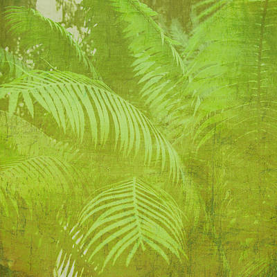 Photograph - Palm Leaves Botanical Abstract by Marianne Campolongo
