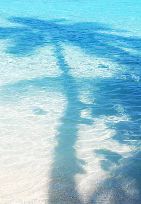 Photograph - Palm Shadow On The Blue Water by Jenny Rainbow