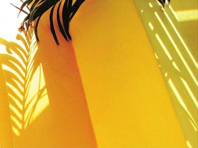 Painting - Palm Shadow On Yellow Wall - Horizontal  by Lyn Voytershark