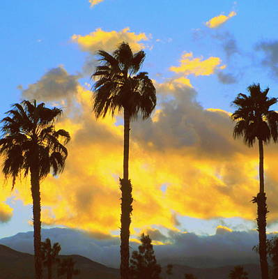 Photograph - Palm Springs Sunset Two by Randall Weidner