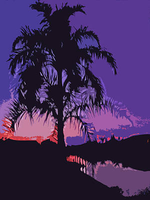 Photograph - Palm Sunset by Aimee L Maher ALM GALLERY