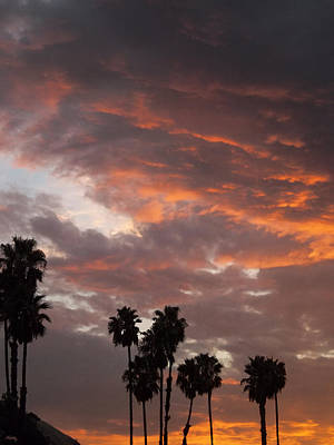 Photograph - Palm Sunset - California by Glenn McCarthy