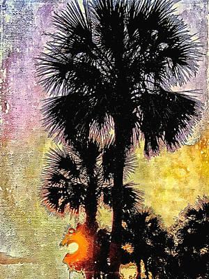 Photograph - Palm Sunset by Kathy Bassett