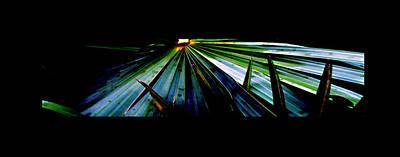 Photograph - Palm Sunset by Richard Erickson