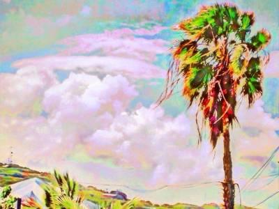 Digital Art - Palm Tree Against Pastel Sky - Horizontal by Lyn Voytershark