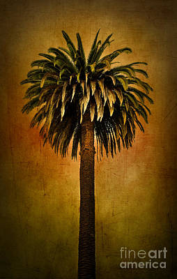 Palm Tree Art Print by Elena Nosyreva