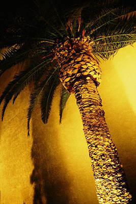 Palm Tree In Vegas. Art Print by Yo Pedro