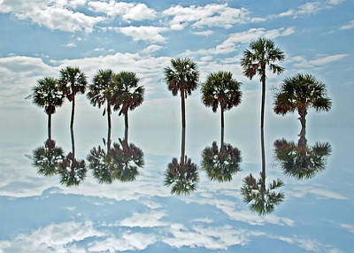 Food And Flowers Still Life Rights Managed Images - Palm Tree Reflection Royalty-Free Image by Aimee L Maher ALM GALLERY