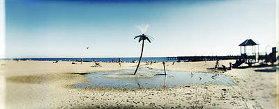 Palm Tree Sprinkler On The Beach, Coney Art Print by Panoramic Images
