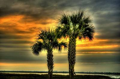 Palm Tree Sunrise Art Print