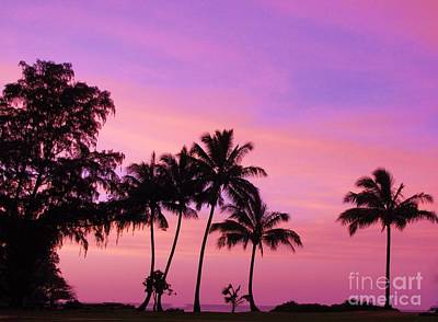 Photograph - Palm Tree Sunset Silohettes by Michele Penner
