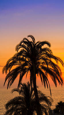 Palm Tree Sunset Vertical Art Print