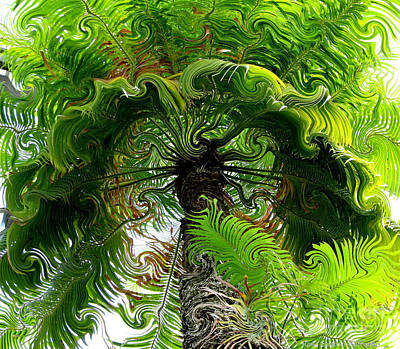 Photograph - Palm Tree With Curlicue Effect by Rose Santuci-Sofranko