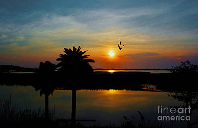 Photograph - Palm Trees And The Marsh by Kathy Baccari