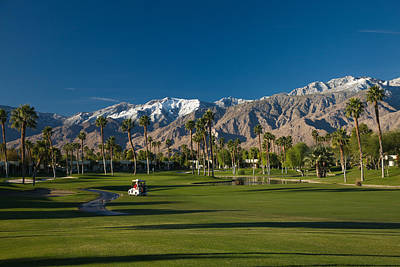 Palm Springs Photograph - Palm Trees In A Golf Course, Desert by Panoramic Images