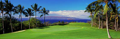 Palm Trees In A Golf Course, Wailea Art Print by Panoramic Images