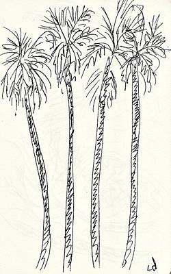 Palm Trees In The Parque De La Bateria Art Print