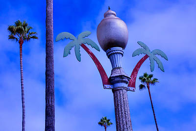 Streetlight Photograph - Palm Trees Lamp Post by Garry Gay