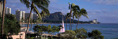 Diamond Head Photograph - Palm Trees On The Beach, Diamond Head by Panoramic Images