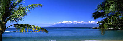 Molokai Photograph - Palm Trees On The Beach, Kapalua Beach by Panoramic Images