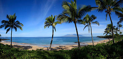 Urban Scenes Photograph - Palm Trees On The Beach, Maui, Hawaii by Panoramic Images