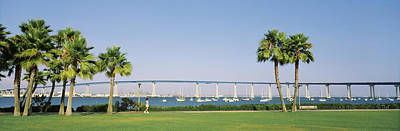 Coronado Bay Photograph - Palm Trees On The Coast With Bridge by Panoramic Images