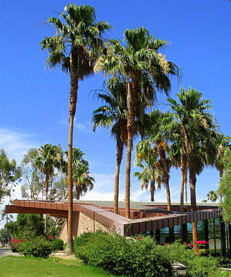 Palm Trees Through The Roof Art Print by Randall Weidner