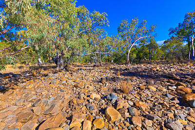 Dry Creek Photograph - Palm Valley Central Australia Outback  by Bill  Robinson