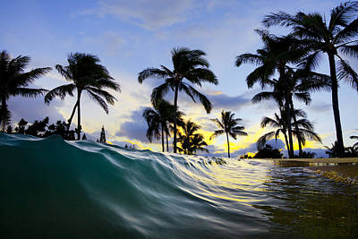 Houses Photograph - Palm Wave by Sean Davey