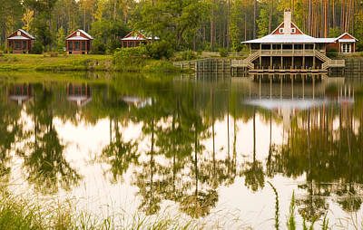 Photograph - Palmetto Bluff South Carolina by Bob Pardue