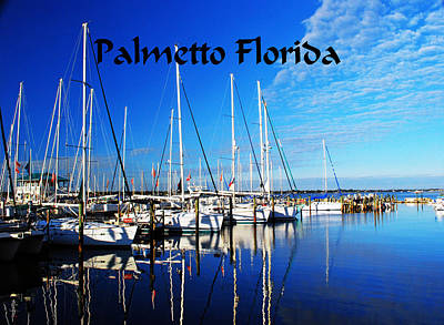 Photograph - Palmetto Florida by Gary Wonning