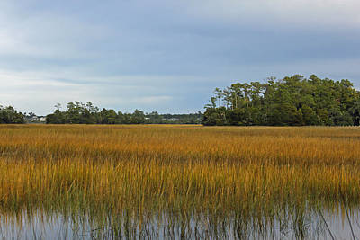 November Marsh - Palmetto Islands Park Original