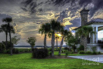 Photograph - Palmetto Paradise by Dale Powell