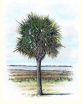 Giclee Drawing - Palmetto Proud by Stephen Paul Herchak