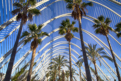 Photograph - Palms And Architekture by Fabian Roessler