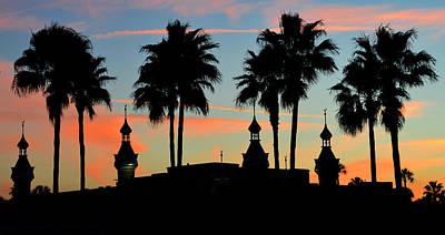 Photograph - Palms And Minarets by David Lee Thompson